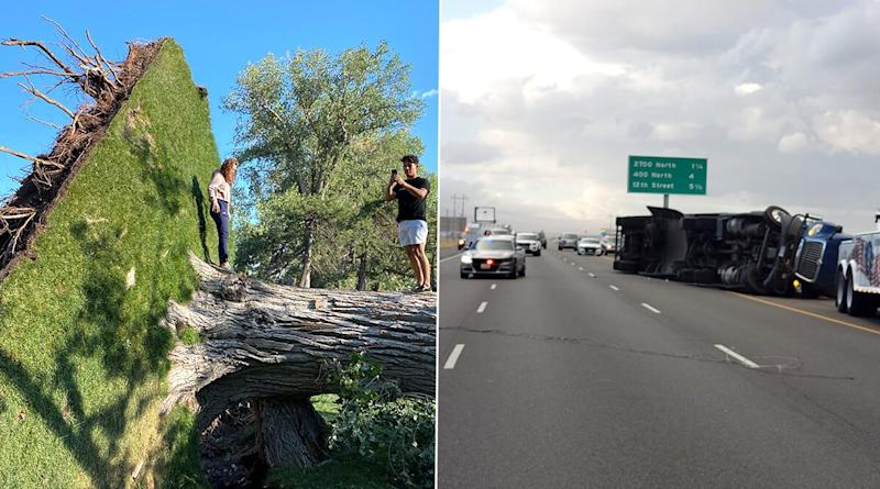 Utah Winds: Trucks Flipped, Trees Uprooted as State Faces Hurricane-Like Gusts of Upto 99 Mph (See Pics & Videos)