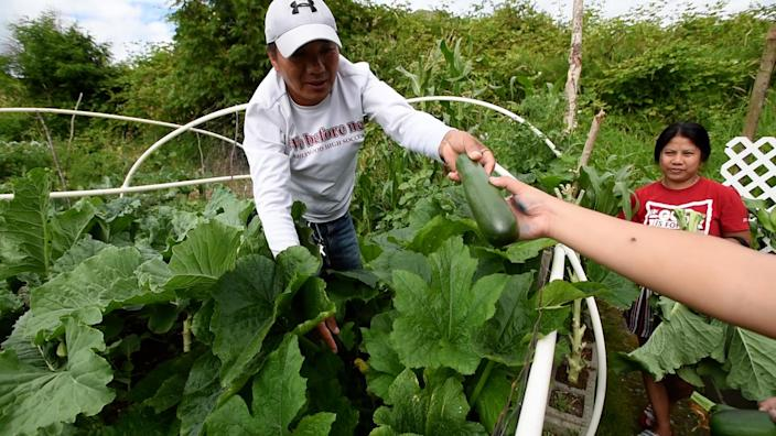 Community members bond while growing their own food in the garden. (Hannah Letinich)