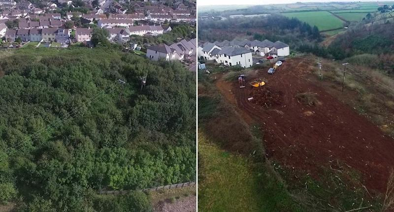 Before and after pictures of the woodland area (Pictures: Andrew Love/SWNS)