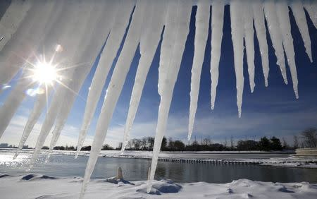 Icicles are seen near a beach on Lake Michigan in Chicago