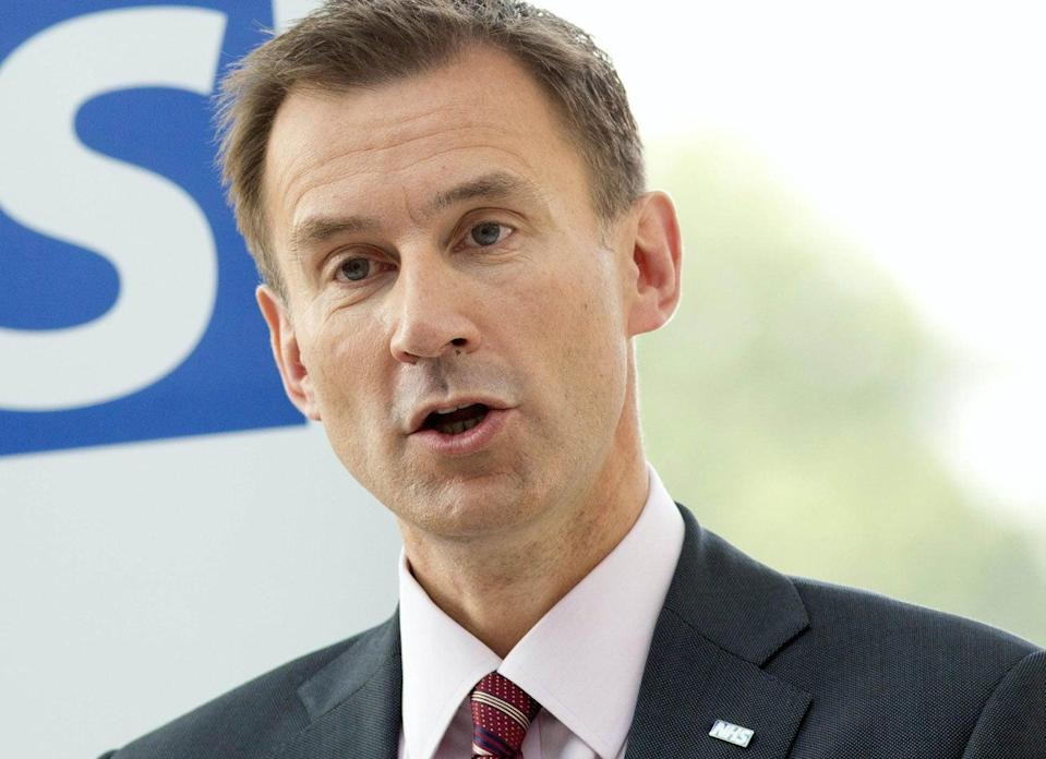 Pressure: Health Secretary Jeremy Hunt is appealing a High Court ruling over the A&E services at Lewisham (PA)