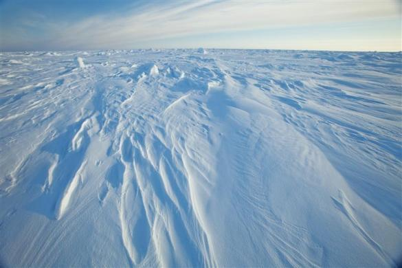 Wind patterns are left in the ice pack that covers the Arctic Ocean north of Prudhoe Bay, Alaska March 18, 2011.