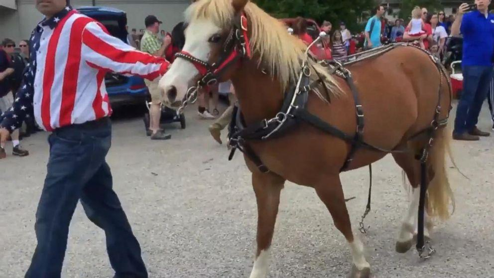 Show ponies break loose, injure 3 at Wisconsin Memorial Day parade (ABC News)