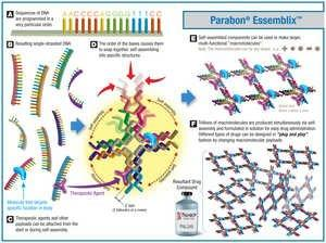 Parabon NanoLabs Awarded NSF Grant for Development of Cancer Therapeutic With Industry Partner Janssen R&D