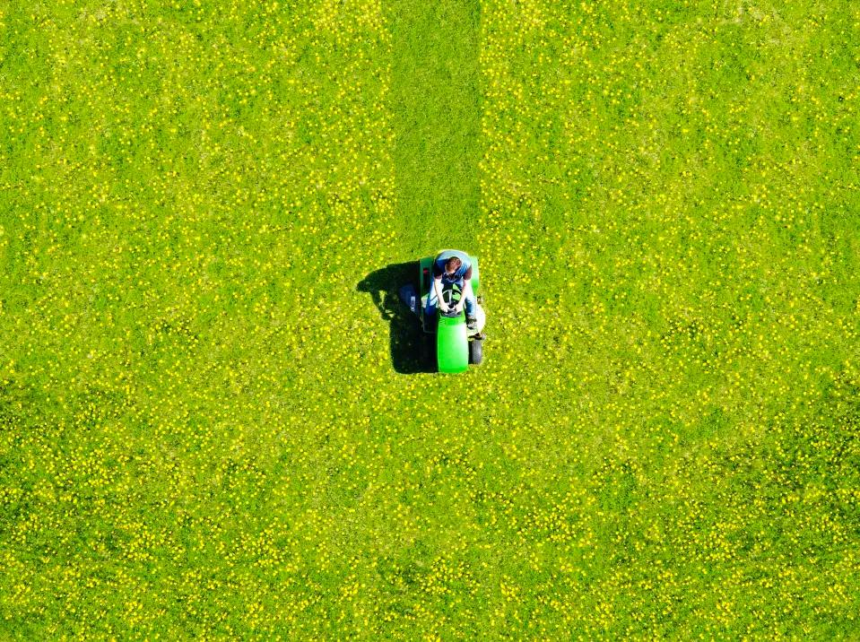 Treat your lawn well and it just might look as good as this one. (Photo: Getty Images)