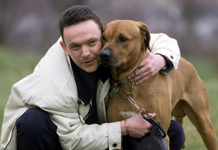 Man's best friend will be hoping British-based owners have all the paperwork in order if they are to be able to travel to the EU together -- or even as far as Northern Ireland