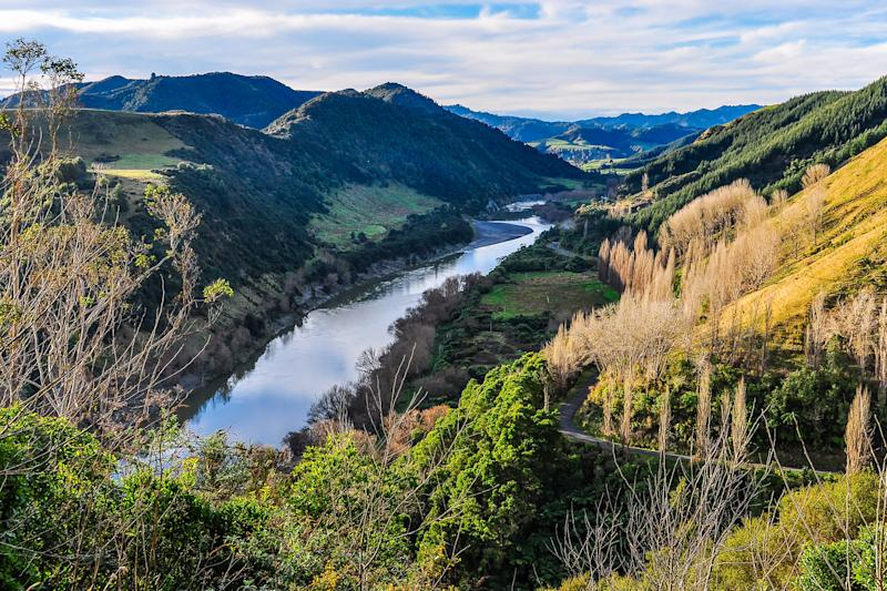 Legal status: the Whanganui River in New Zealand: Shutterstock