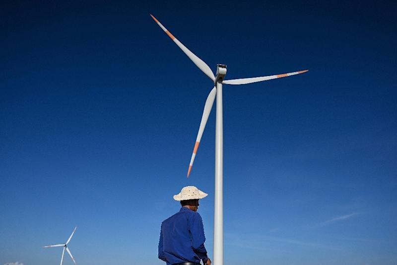 Renewables alone cannot meet Vietnam's insatiable appetite for power (AFP Photo/Manan VATSYAYANA)