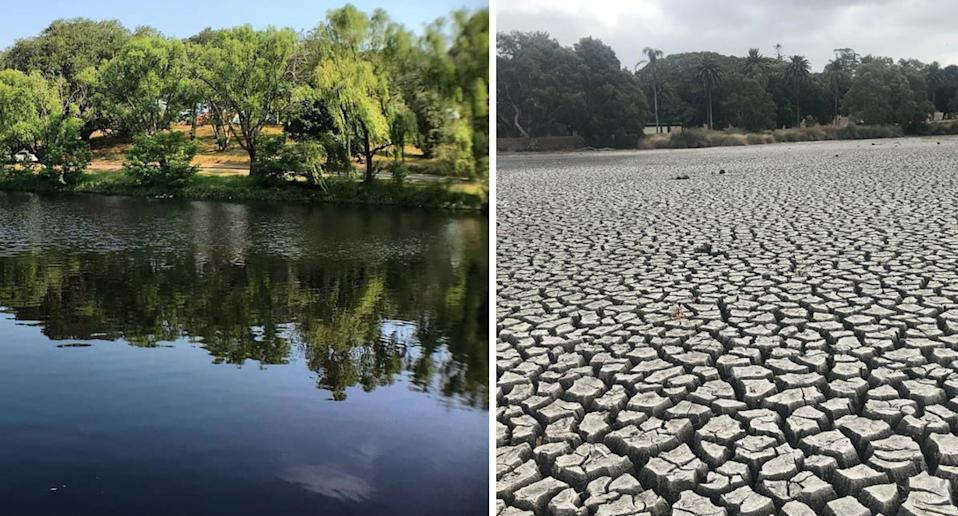 A split photo shows a green and full Busbys Pond (left) compared to the dried out body of water (right).