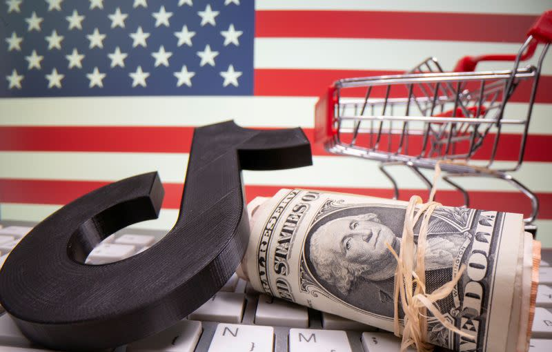 FILE PHOTO: A 3D printed Tik Tok logo, dollar banknotes, shopping cart and keyboard are seen in front of U.S. flag in this illustration