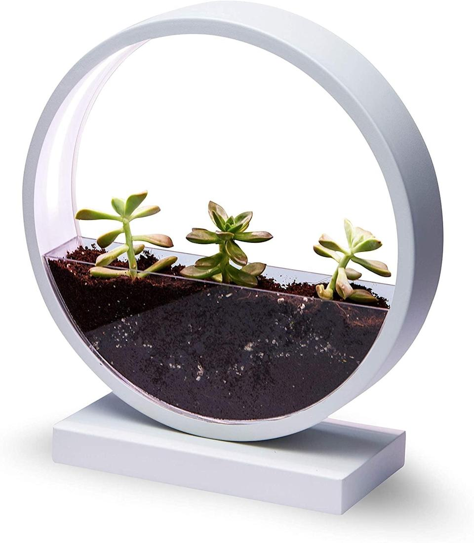 <p>Become a plant parent with this <span>Make Lemonade Indoor LED Planter with Easy-Grow Accessories Kit</span> ($40). The LED light will help your plants grow in a room that doesn't get enough sunlight.</p>