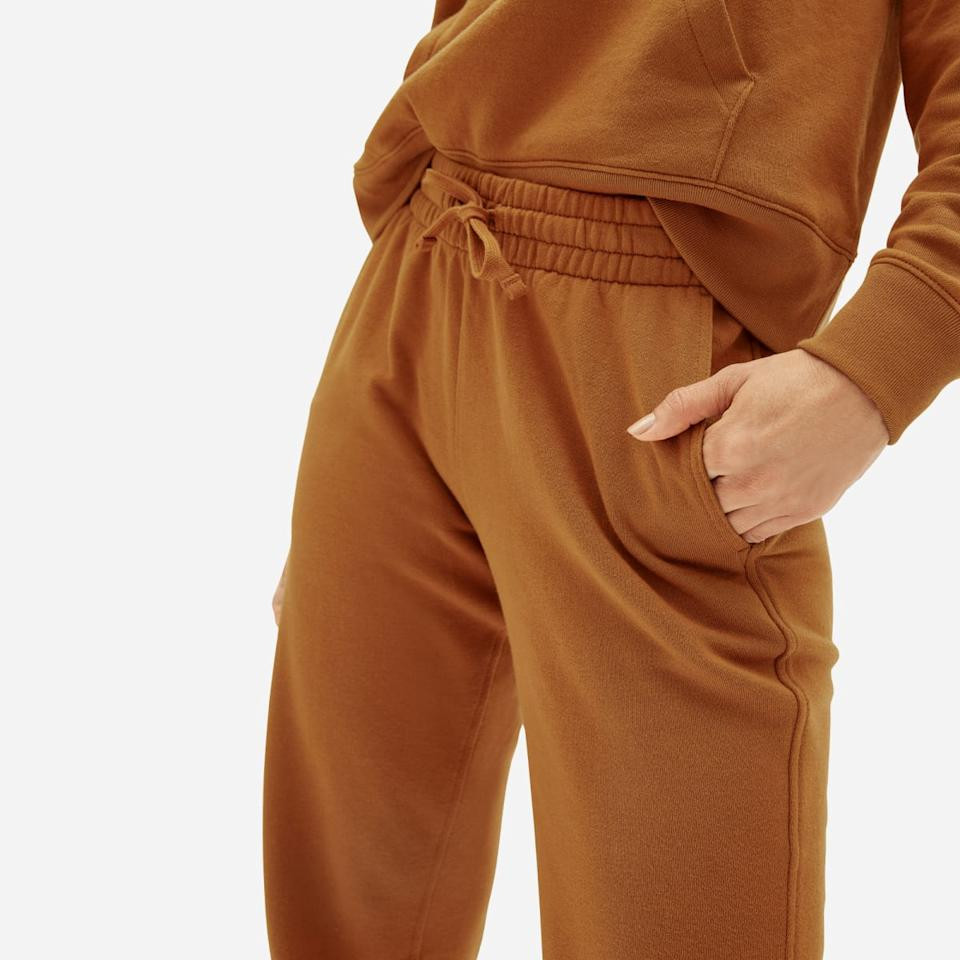 The Lightweight French Terry Jogger in the colour cider. (Image via Everlane)