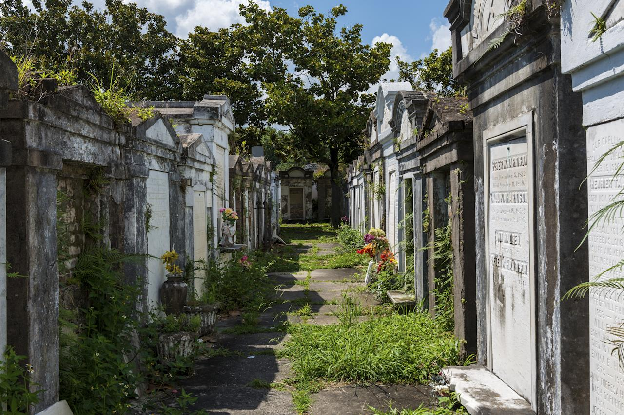<p><strong>What's the big picture here?</strong><br> Our small group met at the Garden District Book Shop and spent the next two hours walking around that area and one of NOLA's most grand burial grounds.</p> <p><strong>Tell us about your fellow tourees.</strong><br> Everyone seemed to be here for a history lesson rather than the pure histrionics some boo-scary tours pride themselves on.</p> <p><strong>How are the guides, then?</strong><br> The guide was a pro whose love of history and New Orleans' rich culture rang out loud and clear.</p> <p><strong>Anything you'll be remembering weeks or months or years from now?</strong><br> Not gonna lie—it was kinda cool to see the current and former homes of larger-than-life figures like Trent Reznor, Nicolas Cage, and Anne Rice.</p> <p><strong>Money, time—how can we make the most of both?</strong><br> History buffs are much better suited for this tour than ghost hunters and Goths.</p>