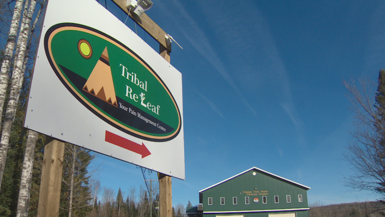 Tribal ReLeaf former employees plead not guilty