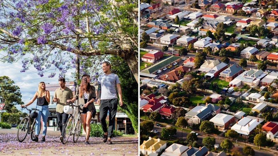 Group of four young people walk on Australian street with bikes under jacaranda tree, aerial view of Australian suburb.