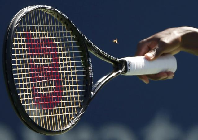 Venus Williams of the U.S. attempts to capture an insect while playing Kimiko Date-Krumm of Japan during their match at the 2014 U.S. Open tennis tournament in New York, August 25, 2014. REUTERS/Mike Segar (UNITED STATES - Tags: SPORT TENNIS)