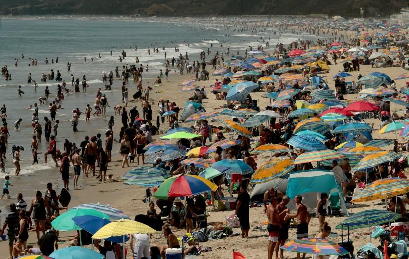 "SANTA MONICA, CA - AUG. 15, 2020.: Beachgoers create a forest of umbrellas as thousands seek refuge in Santa Monica with temperatures reaching triple digits and beyond in inland valleys and deserts on Saturday, Aug. 15, 2020. A heatwave caused by a high pressure system over Southern California is expected to last through next week. (Luis Sinco / Los Angeles Times) <span class=""copyright"">(Luis Sinco/Los Angeles Times)</span>"