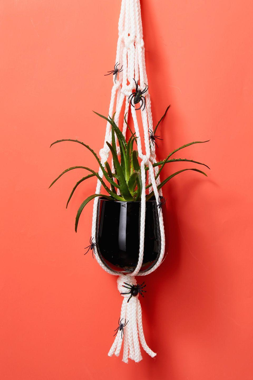 """<p>Ah, the easiest decor of all! Using hot glue or craft glue, attach faux spiders all over a macrame plant hanger. Pop in a spiky plant or succulent to complete the look. </p><p><a class=""""link rapid-noclick-resp"""" href=""""https://www.amazon.com/Mkono-Macrame-Outdoor-Hanging-Planter/dp/B01ARJJ56I/?tag=syn-yahoo-20&ascsubtag=%5Bartid%7C10055.g.421%5Bsrc%7Cyahoo-us"""" rel=""""nofollow noopener"""" target=""""_blank"""" data-ylk=""""slk:SHOP PLANT HANGERS"""">SHOP PLANT HANGERS</a></p>"""