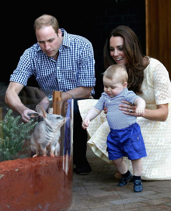 Meeting a bilby during a trip to the zoo in Sydney in 2014. (Getty Images)