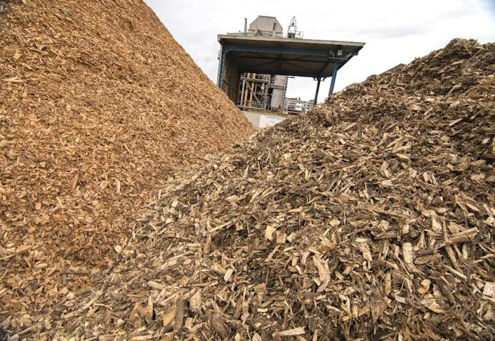 Piles of wooden chips to be processed at the Guessing Energy Technologies research centre in the Austrian town of Guessing (AFP Photo/Joe Klamar)