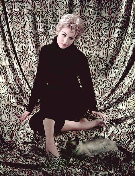 """<p>The sultry Kim Novak plays a witch who wants her neighbor, played by Jimmy Stewart, to fall in love with her in <a href=""""https://www.amazon.com/Bell-Book-Candle-Janice-Rule/dp/0767821556/ref=sr_1_1?tag=syn-yahoo-20&ascsubtag=%5Bartid%7C10055.g.34403196%5Bsrc%7Cyahoo-us"""" rel=""""nofollow noopener"""" target=""""_blank"""" data-ylk=""""slk:Bell, Book and Candle"""" class=""""link rapid-noclick-resp""""><em>Bell, Book and Candle</em></a> (1958), a fantasy-comedy that's unexpectedly fun. </p>"""