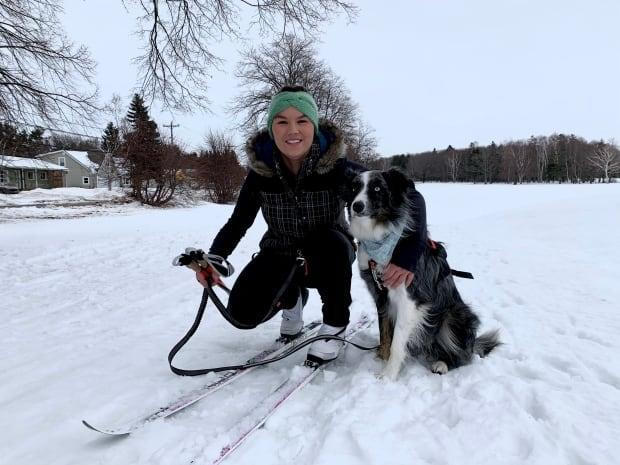 Leah Morris and Skye the border collie go skijoring once a week.  (Sheehan Desjardins/CBC  - image credit)