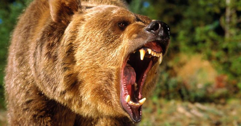 A Wall Street bear warns 'bad things are about to happen,' and a recession is on the way
