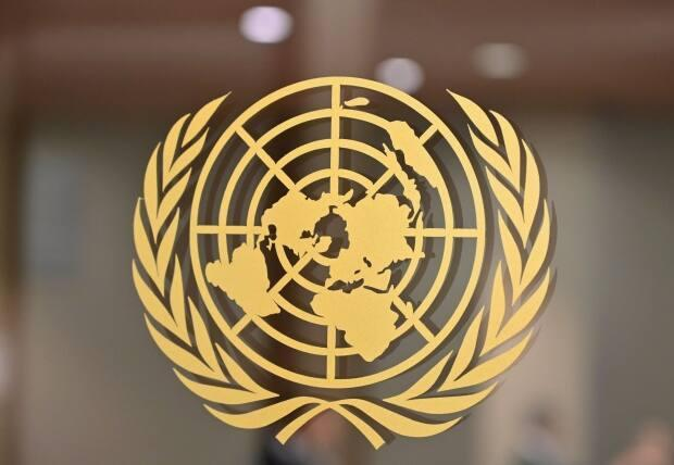 Carl Mercer was attracted to the United Nations for his career. 'I slowly made my way there professionally until it happened.'