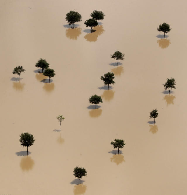 <p>Trees rise from a field submerged by water from the flooded Brazos River in the aftermath of Hurricane Harvey Friday, Sept. 1, 2017, near Freeport, Texas. (Photo: Charlie Riedel/AP) </p>