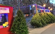 <p>Thanksgiving weekend New York City's sidewalks turn festive, as Christmas tree sellers start setting up and the scent of pine is around every corner. Make like Harry and Sally and get a tree yourself — you could even go to where they got theirs in the movie, at Broadway and 96th Street.</p>