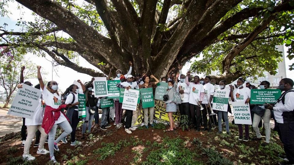 Campaigners in front of the fig tree in Nairobi, Kenya - October 2020