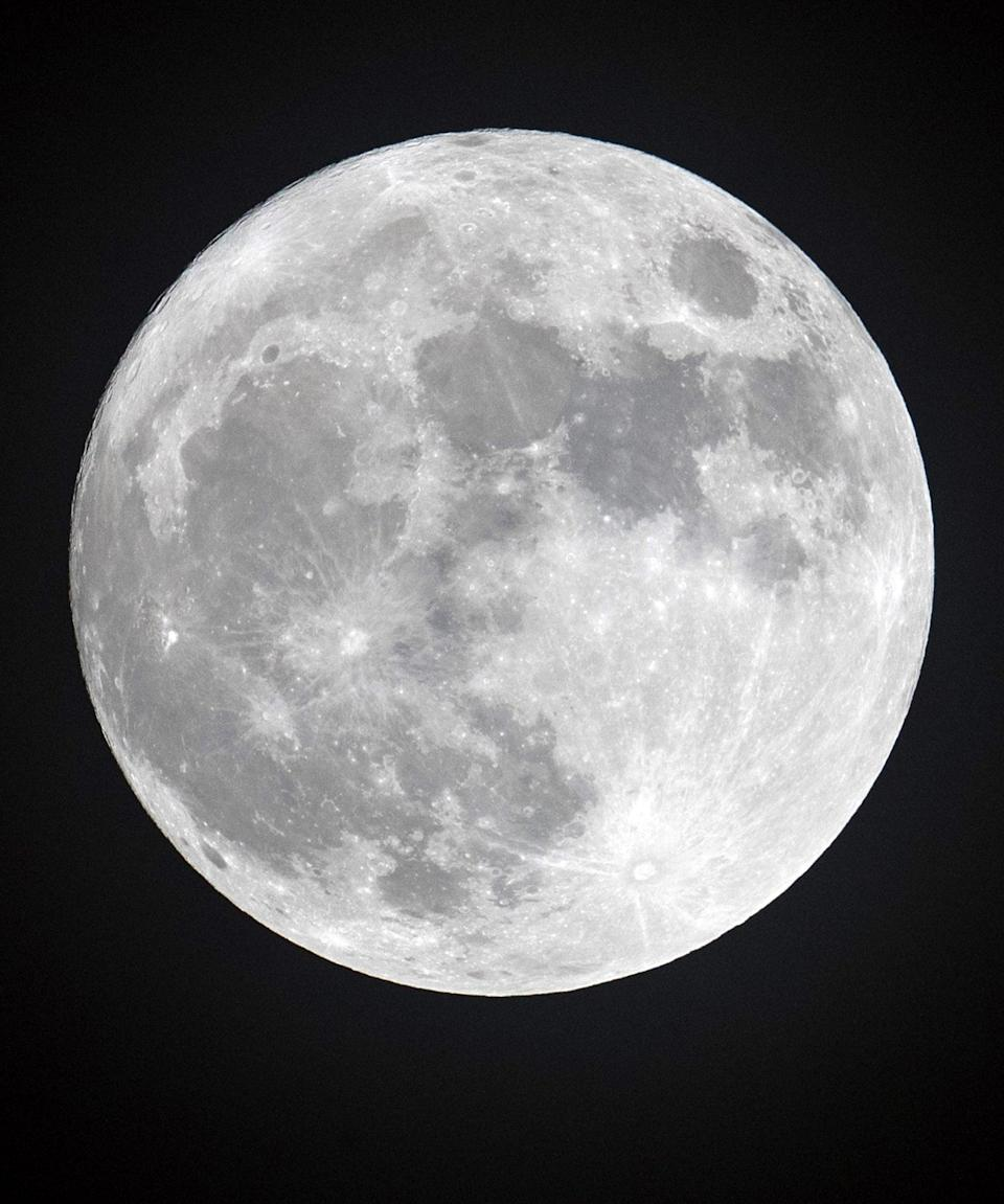 """<h2>Full Moon</h2> <br>This the phase where the moon is the most energetic — the biggest and the brightest. """"Your strength will be intense and your confidence high, so it's the time for action,"""" Arriana says.<br><br>""""You become aware of your effects upon others and they respond accordingly,"""" Hale says, of full moons. """"You may receive some form of clarity about your situation.""""<br> <br>People born under a full moon """"often have concrete ideals or receive illumination themselves,"""" Hale says. But they may find themselves flip-flopping, shifting quickly from emotional to logical thinking. """"They may have a sense of being divided against oneself,"""" she says.<br><br>Hale says that politicians born under a full moon are always a polarizing influence — she lists Newt Gingrich and Donald Trump as examples. <span class=""""copyright"""">Photo: Matt Cardy/Getty Images.</span><br><br><br><br><br><br><br>"""