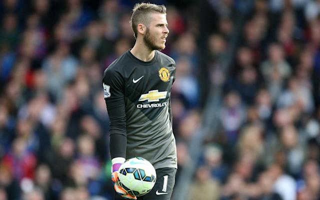 It has been reported in Spain that De Gea has already agreed personal terms with Real Madrid - Rex Features