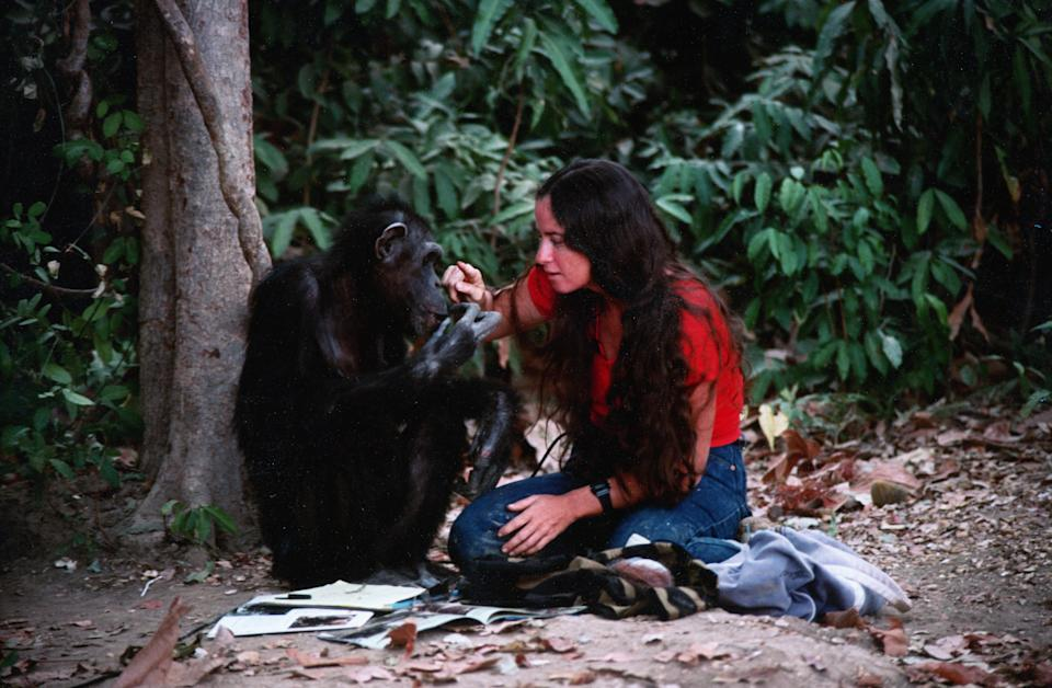 Janis and Lucy in a still from Lucy The Human Chimp (Channel 4)