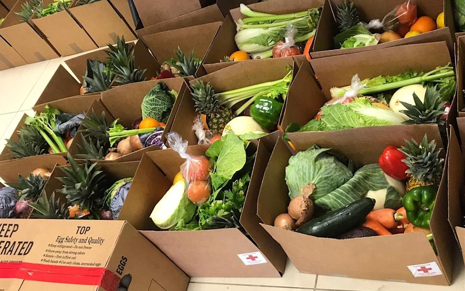Fred Olsen Cruise Line donates vegetables to charities in Barbados