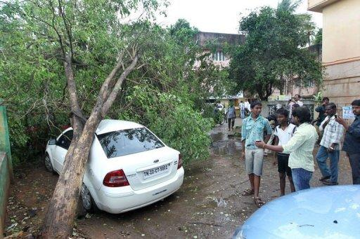 A tree rests on top of a car following heavy winds in the run up to Cyclone Nilam in Chennai. Thousands of people evacuated from their homes in southeast India Wednesday as a cyclone slammed into the coast, killing two people, according to reports, and causing an oil tanker to run aground