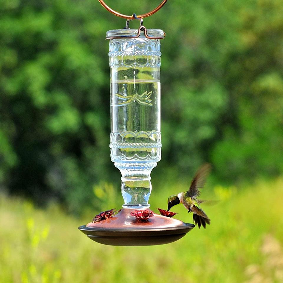 <p>If you have a lot of hummingbirds in your area, befriend these magestic creatures with the <span>Perky-Pet 8107-2 Antique Bottle 10-Ounce Glass Hummingbird Feeder</span> ($16, originally $19). It has four flower feeding ports and it's super easy to maintain and clean. </p>