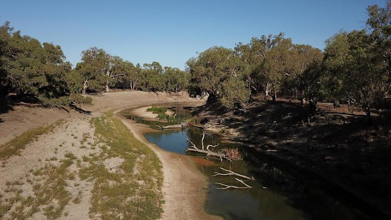 Protesters wanting the Murray-Darling Basin Plan fixed or scrapped will encircle Parliament House