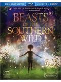 Beasts of the Southern Wild Box Art