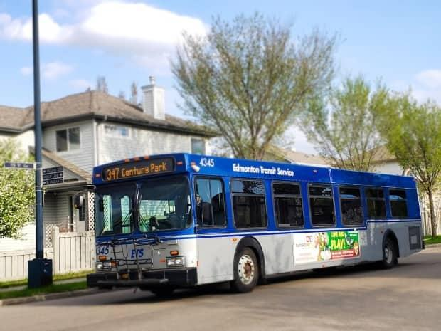 New bus routes in Edmonton are set to take effect Sunday.  (Cort Sloan/CBC - image credit)