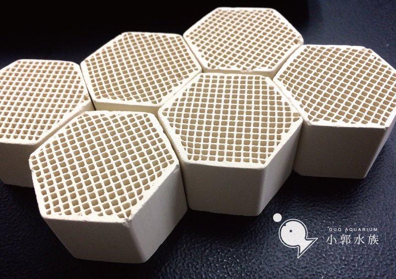 小郭水族【多孔性 蜂巢培菌 陶瓷磚 10入 散裝】蜂巢塊 陶瓷環 培菌 硝化菌 生物珠 可參考