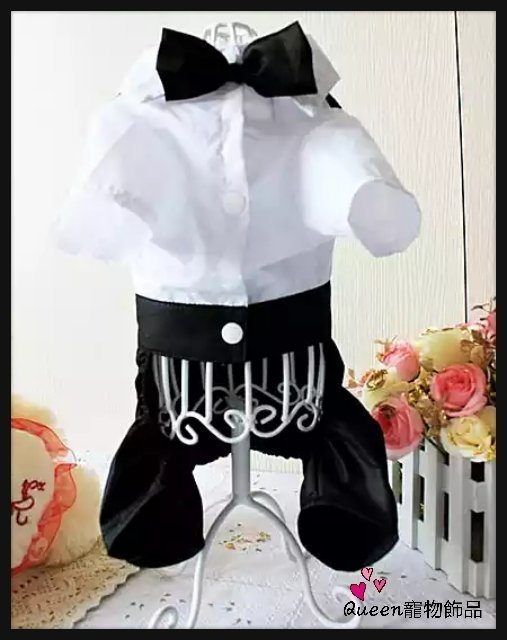 Queen寵物飾品 春夏薄款寵物婚紗 帥氣紳士 新郎婚禮禮服四腿衣(含領結)