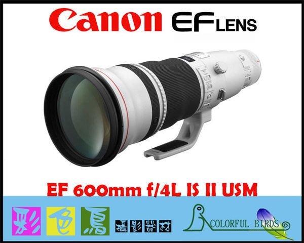 彩色鳥 (鏡頭出租 租鏡頭 ) 租 CANON EF 600mm F4 L II IS USM  CANON 600MM