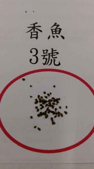 (超商取貨一箱限4.5公斤)香魚飼料 3號 (1公斤/包) /孔雀魚飼料/小型魚飼料/七彩神仙飼料