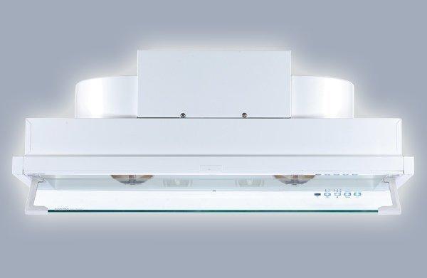 【阿貴不貴屋】 櫻花牌 DR3590 L 全隱藏型除油煙機 渦輪變頻系列(80cm)