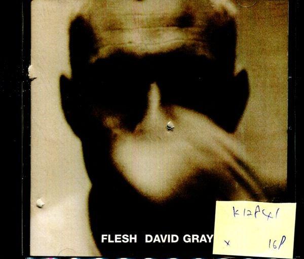*真音樂* FLESH DAVID GRAY 二手 K12841 (封面底破)