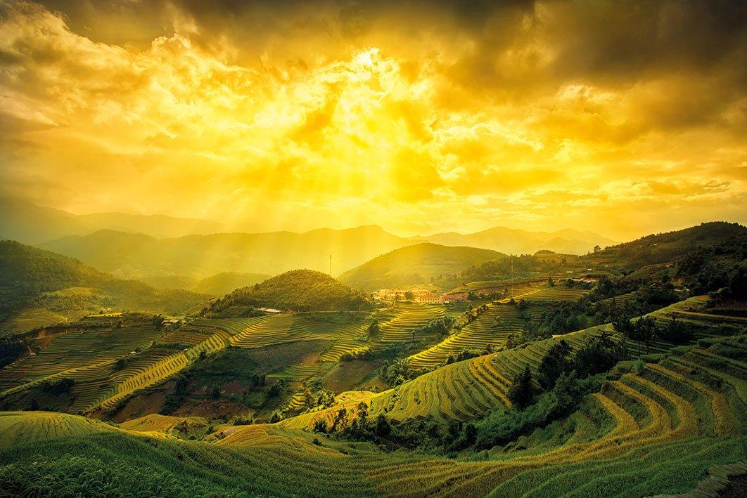 海報 英國 海報 PP34439( 海報 梯田 Rice Fields Of Yen Bai)