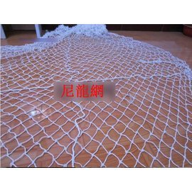 代理採購-尼龍網白色-線徑3mm 孔徑10cm 長4M*寬2M*1件