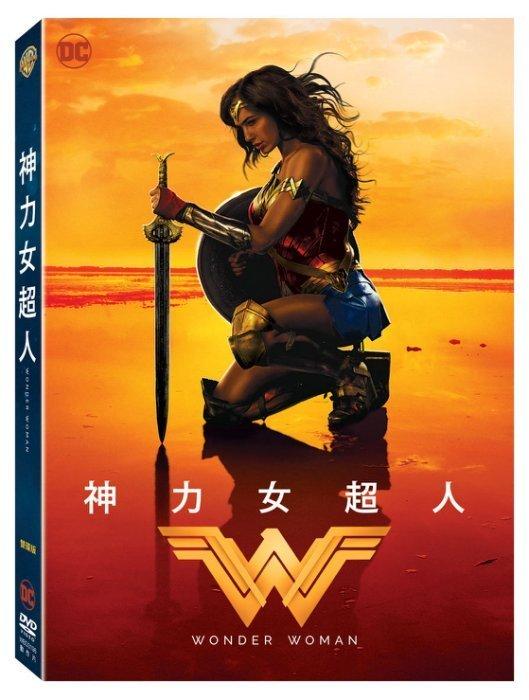 ⊕Rain65⊕ DVD【神力女超人/雙碟特別版】-換腦行動-蓋兒加朵*幸運之吻-克里斯潘恩- 未拆(直 )