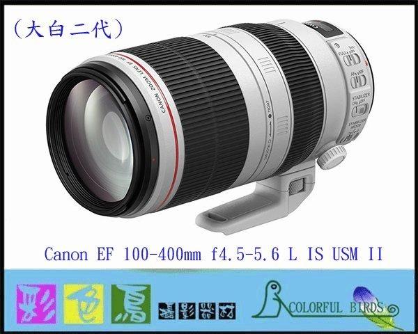 彩色鳥(租鏡頭 鏡頭出租) Canon EF 100-400mm f4.5-5.6L IS II USM 大白二 大白2